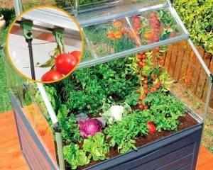 Palram - Canopia   Estufa de Jardim Plant Inn em Policarbonato para cultivo de plantas 8