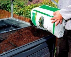 Palram - Canopia   Estufa de Jardim Plant Inn em Policarbonato para cultivo de plantas 6