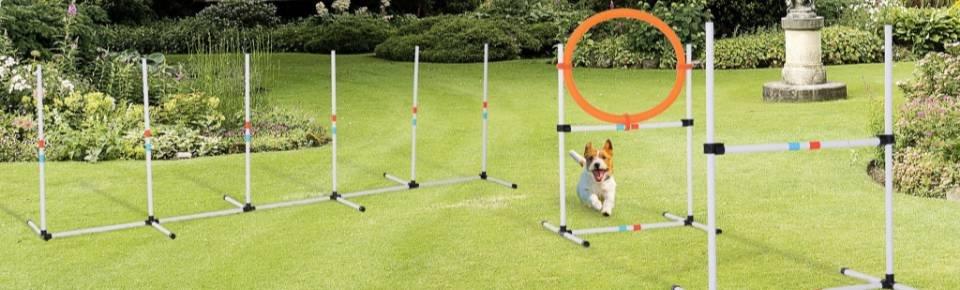 Outros produtos caninos O Meu Jardim